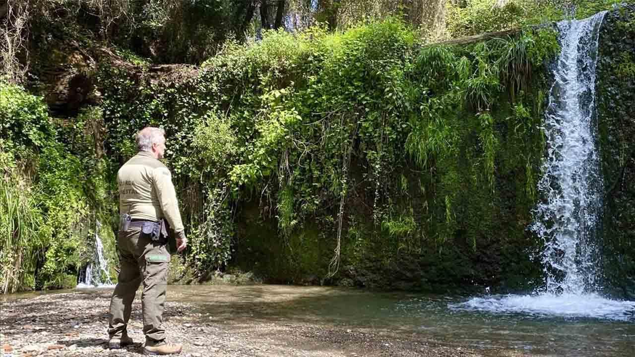 Llega el verano al Parque Natural de Collserola y es necesario extremar las precauciones