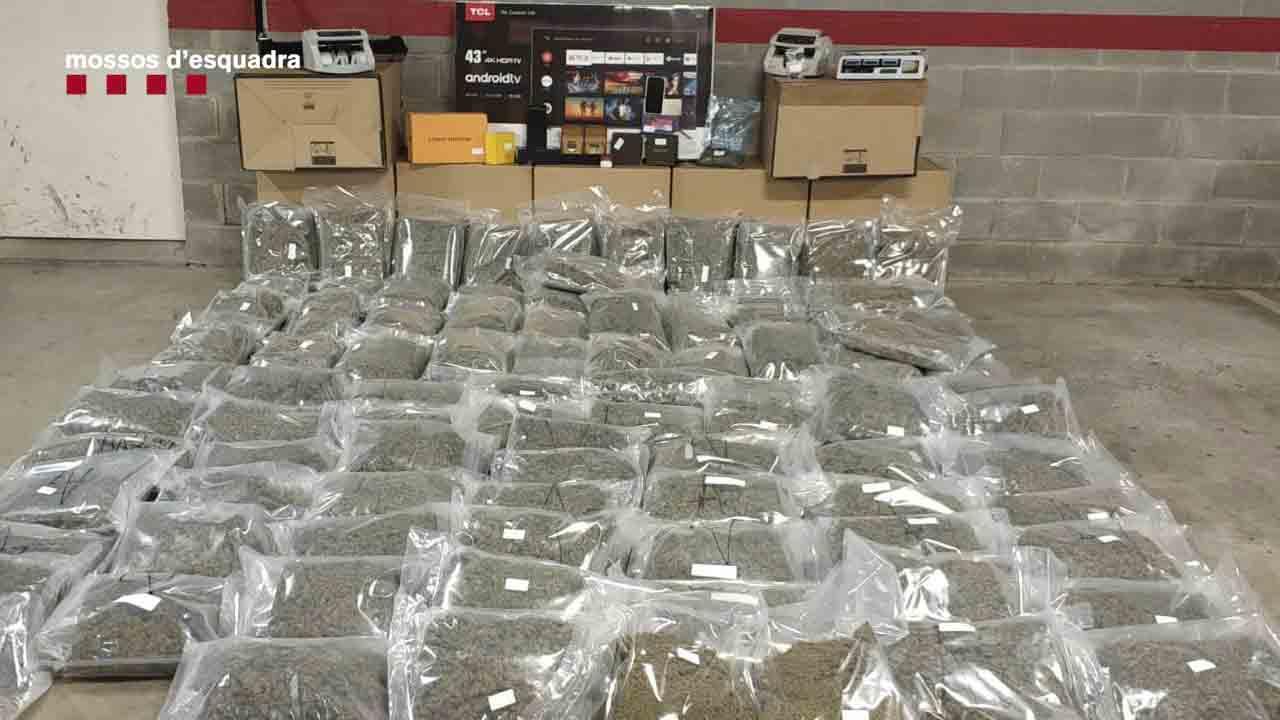 Detenido un hombre en el Garraf por transportar 100 kilos de cogollos de marihuana