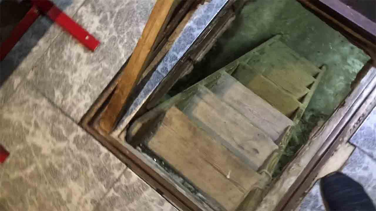 Desmantelado un cultivo de marihuana en un local de L'Hospitalet de Llobregat