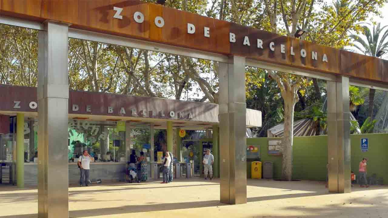 Constituido el Comité Científico y de Ética del Zoo de Barcelona