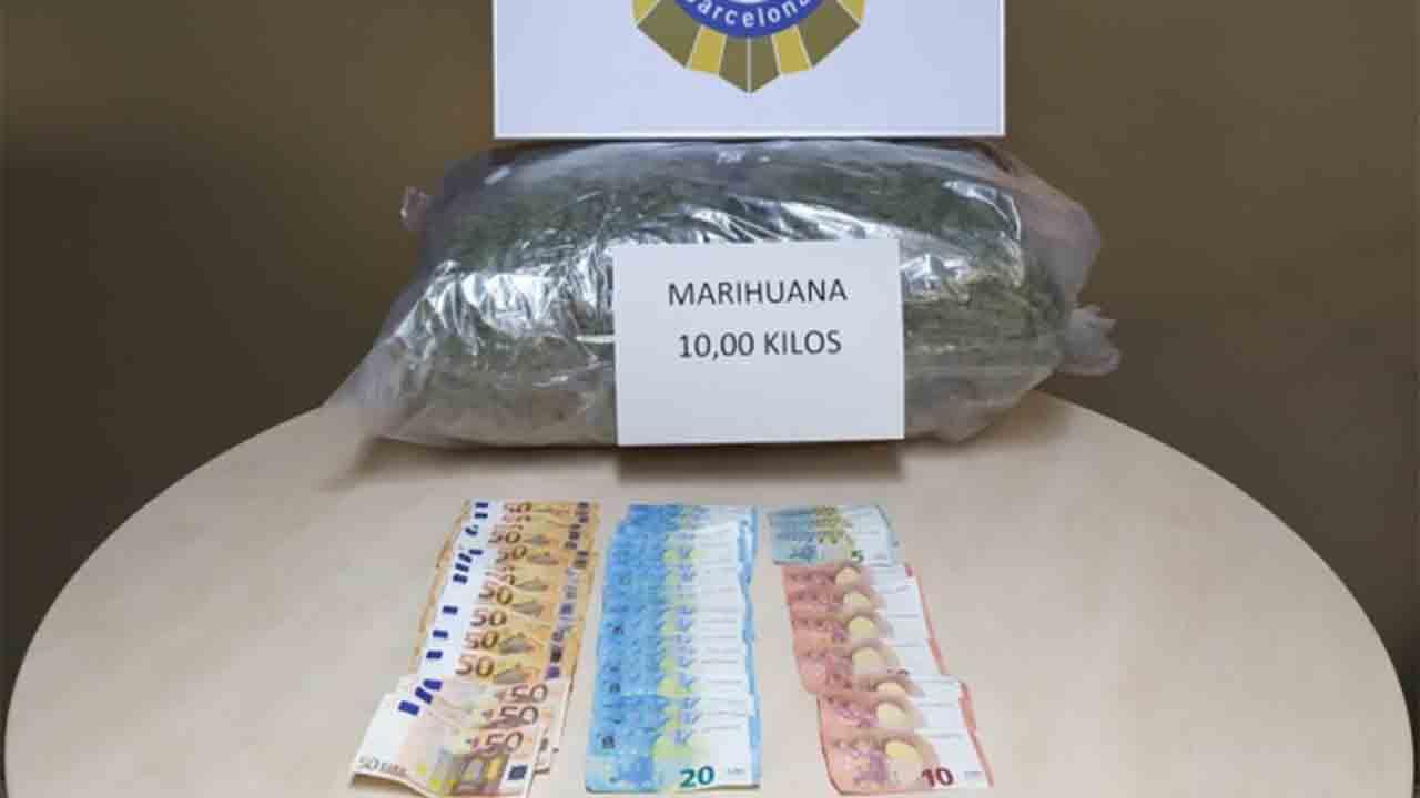Detenidos al intentar enviar 10 kilos de marihuana por una empresa de transportes