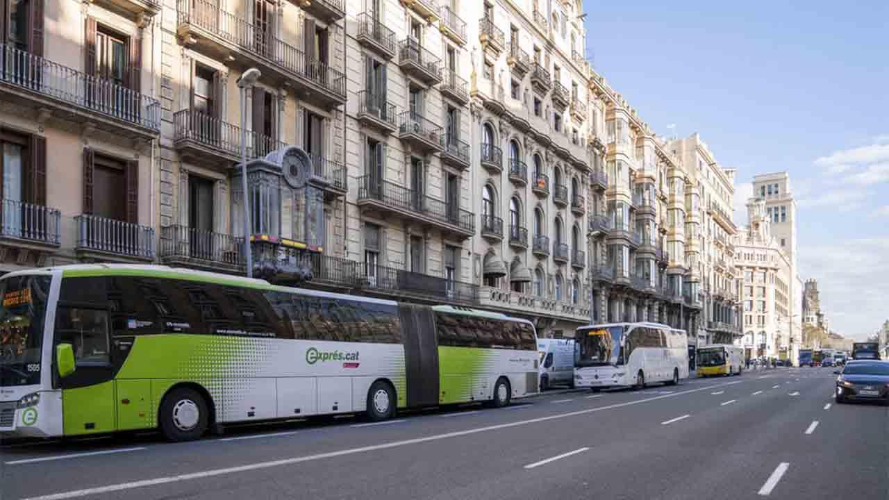 Nuevas ubicaciones de las paradas de bus regular de la ronda de la Universidad