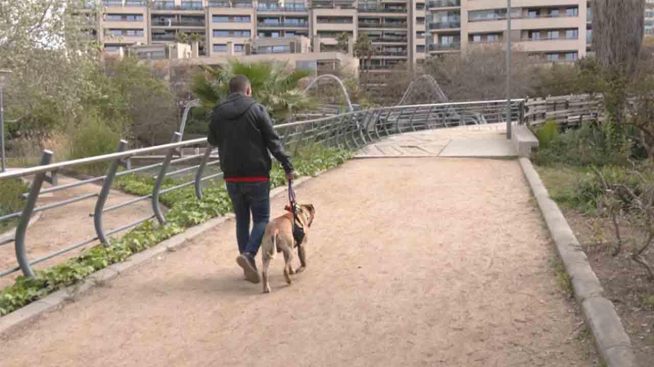 Expulsan a los perros del Parc Diagonal Mar