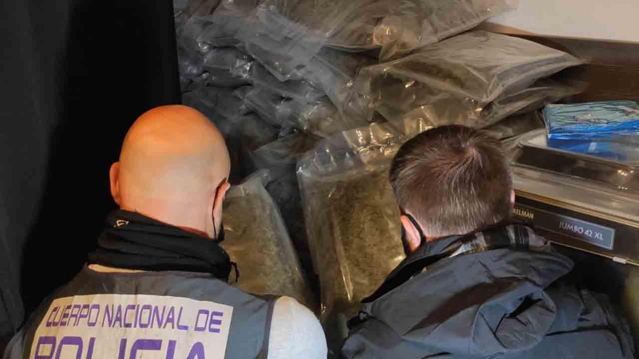 Una organización de tráfico de drogas operaba desde un taller mecánico