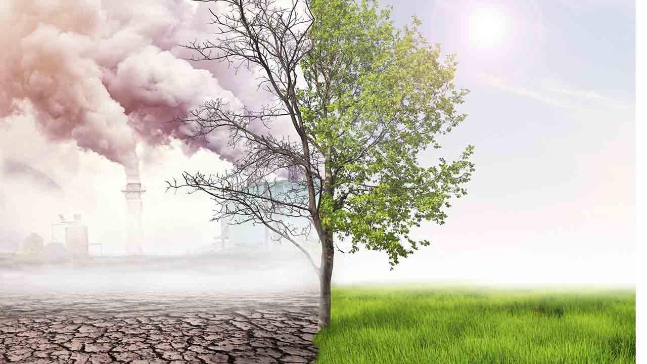 La ciencia responde a la emergencia climática