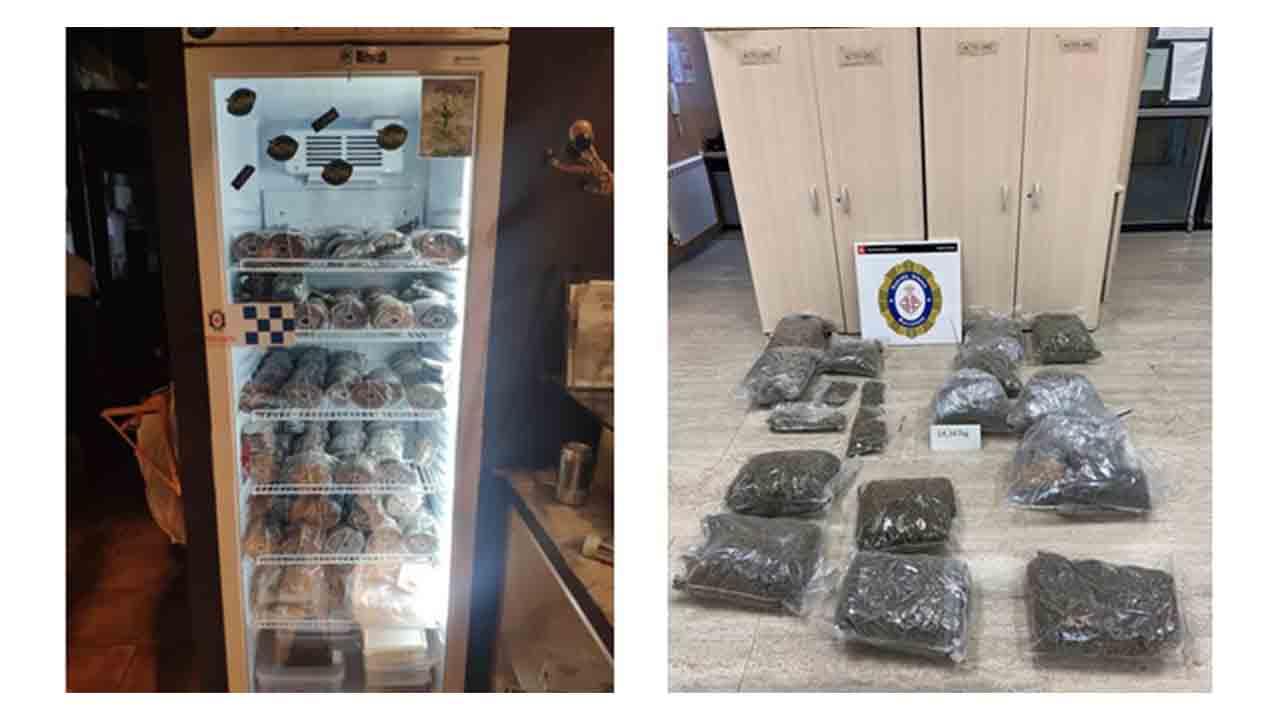 Intervenidos 2 millones de semillas y 15 kilos de marihuana