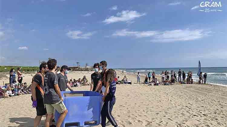 Liberan en el playa de El Prat a dos tortugas después de 10 años de recuperación en un centro
